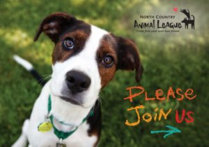 North Country Animal League Donation